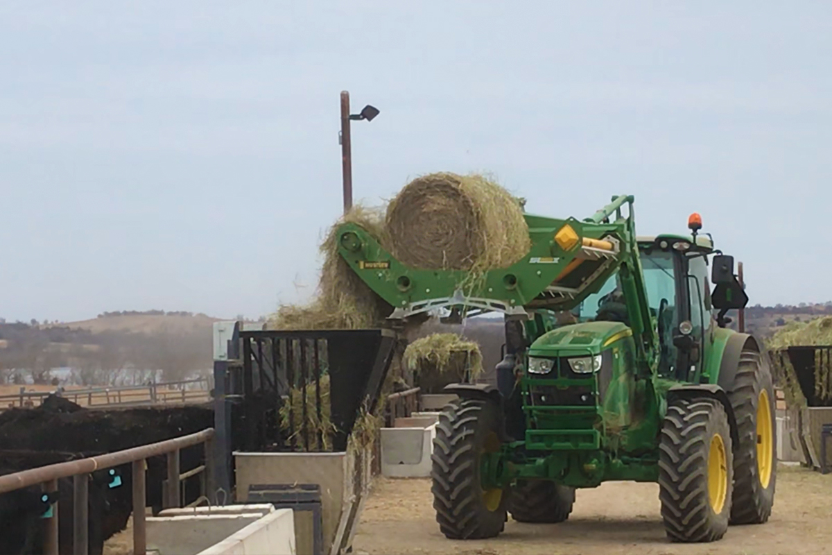 Tractor filling hay feeders